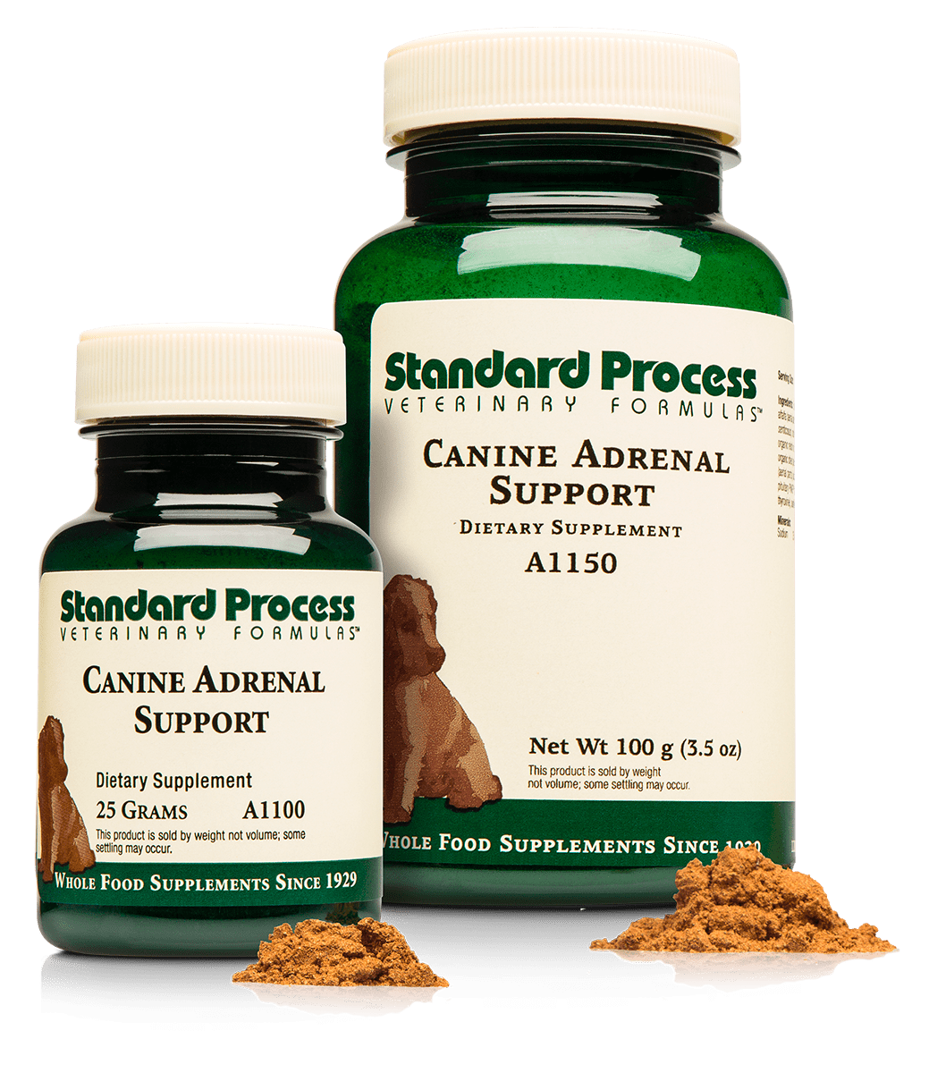 Canine Adrenal Support